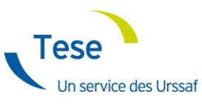 Le Tese Titre Emploi Service Entreprise Mooc Net Entreprises